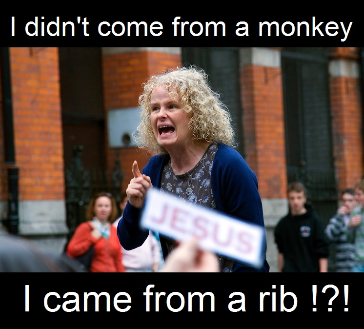I came from a rib !?!