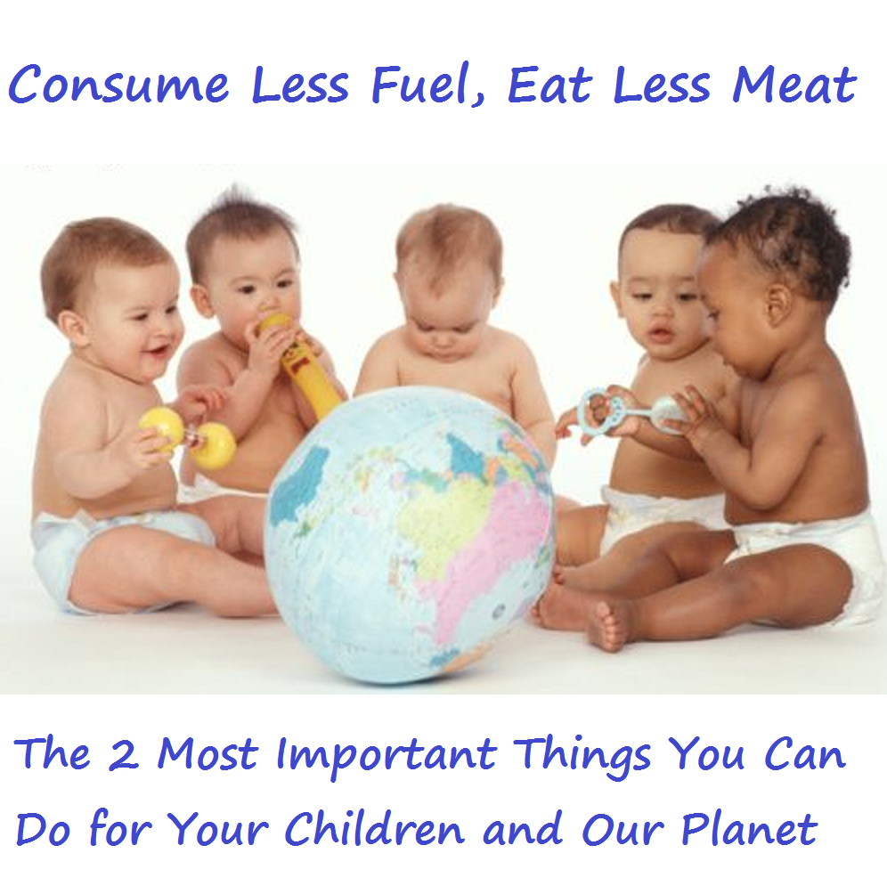 Consuming Less Fuel and Eating Less Meat are the 2 Most Important Things You Can Do for Your Children and Our Planet