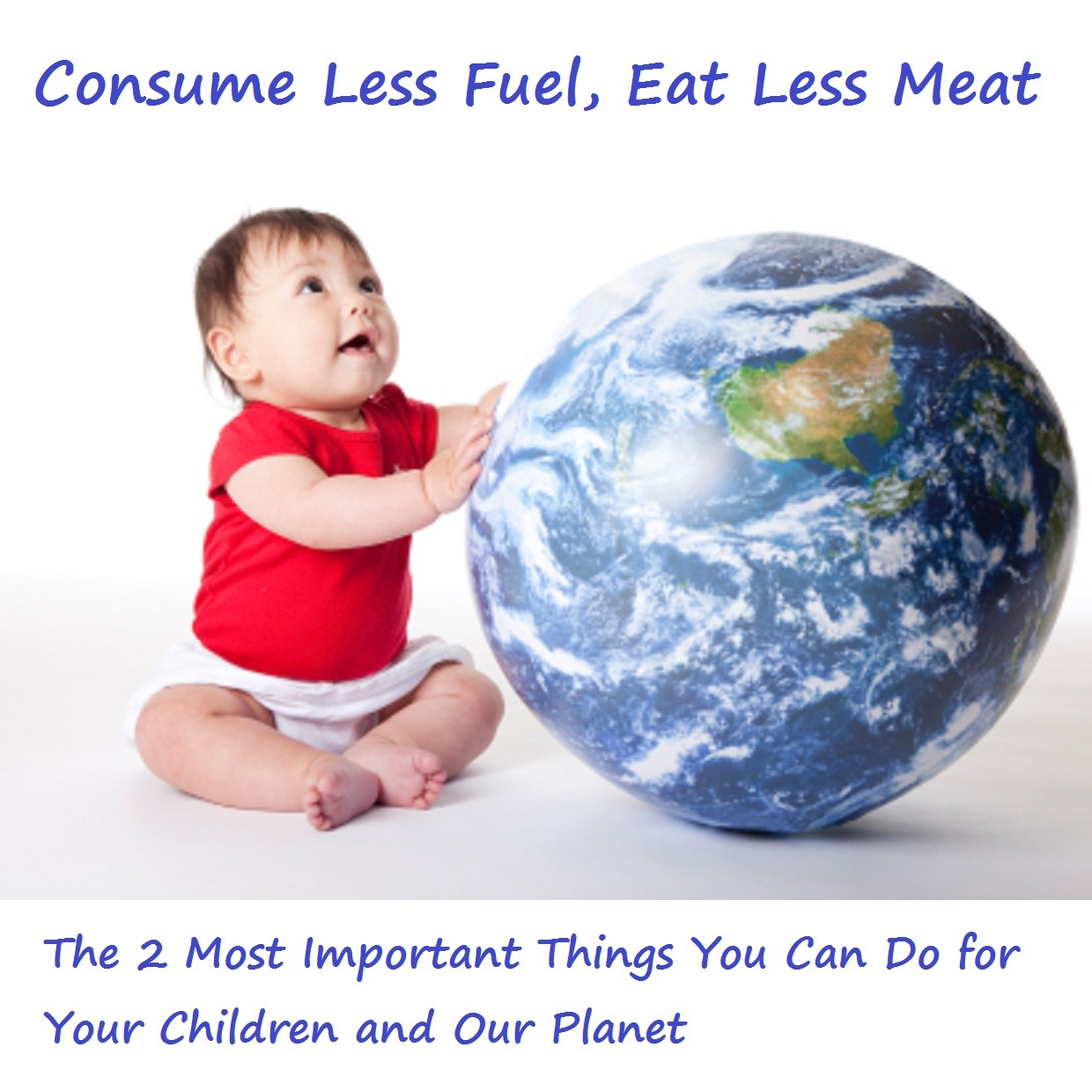 Consume Less Fuel, Eat Less Meat