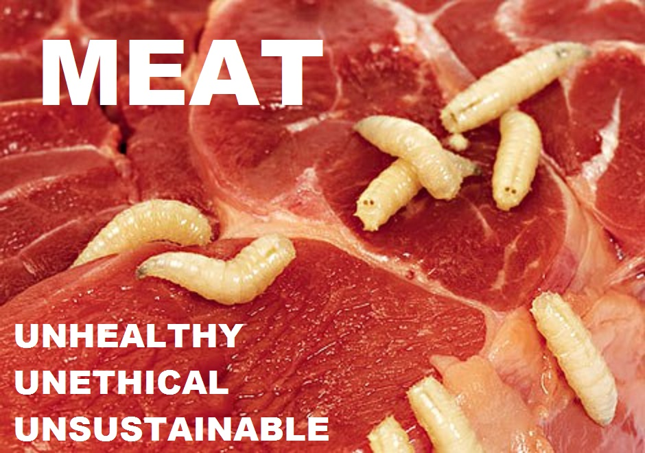 Meat Unhealthy Unethical Unsustainable