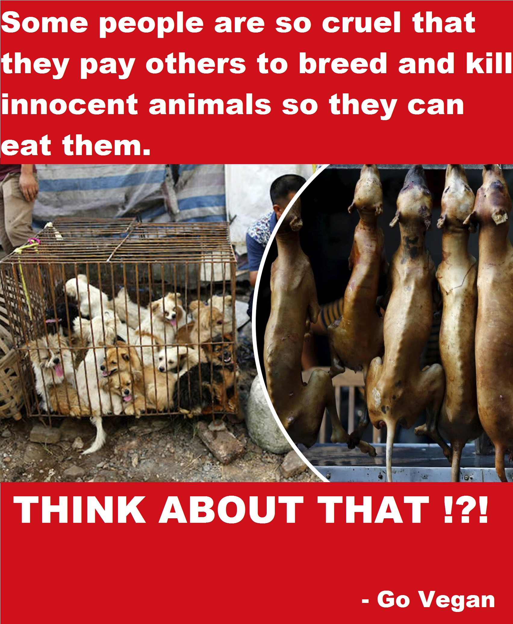 THINK ABOUT THAT !?! - Go Vegan
